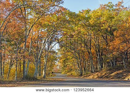Rural Road in the Fall in Shenandoah National Park in Virginia