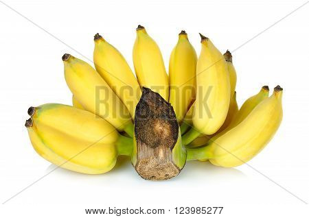Bunch of banana isolated on white background.