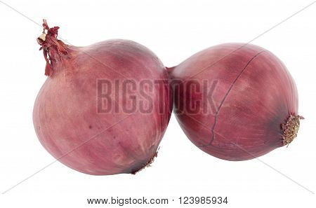 two whole red onion on white background
