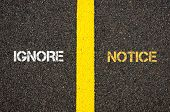 Antonym concept of IGNORE versus NOTICE written over tarmac, road marking yellow paint separating line between words poster