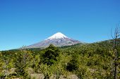 Scenic view of the vulcano Osorno during a trek in the Vincente Perez Rosales National Park in Petrohue poster