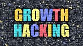 Growth Hacking Concept. Growth Hacking Drawn on Dark Wall. Growth Hacking in Multicolor. Growth Hacking Concept. Modern Illustration in Doodle Design of Growth Hacking. poster