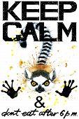 Keep Calm. Keep Calm and do not eat after 6 p.m. Keep Calm Tee shirt design. Lemur watercolor illustration. Lemur. Handwritten text. Keep Calm Tee shirt print. poster