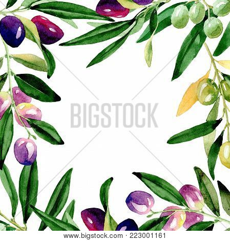 Olive tree frame in a watercolor style. Full name of the plant: Branches of an olive tree. Aquarelle olive tree for background, texture, wrapper pattern, frame or border.