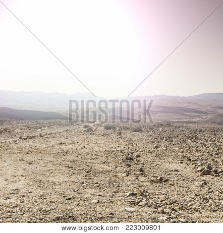 Rocky hills of the Negev Desert in Israel at sunrise. Breathtaking landscape of the desert rock formations in the Southern Israel Desert.