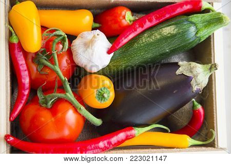 Preparing Healthy Food, Vegeterian, Vegan Concept. A set of fresh whole vegetables: zuccini, eggplant, tomatoes, chilli peppers and garlic, top view