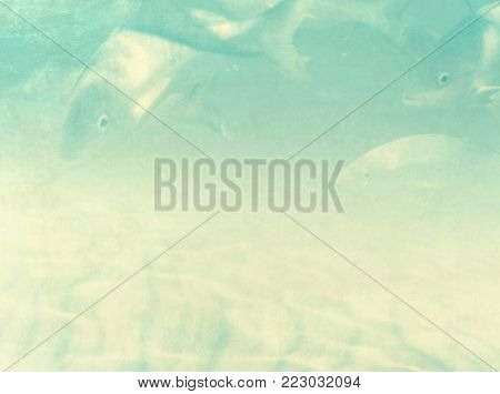 Underwater fishes background - retro under water sea life and seabed scene
