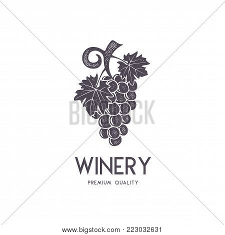 Wine, winery logo template. Drink, alcoholic logotype, beverage symbol, monogram. Vine icon and typography. Winery, premium quality sign. Stock vector illustration isolated on white background.