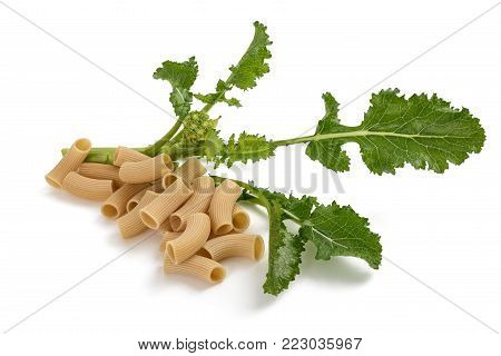 Fresh turnip greens with pasta isolated on white background