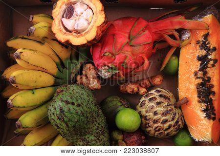 Papaya Annona Bannana Dragonfruit