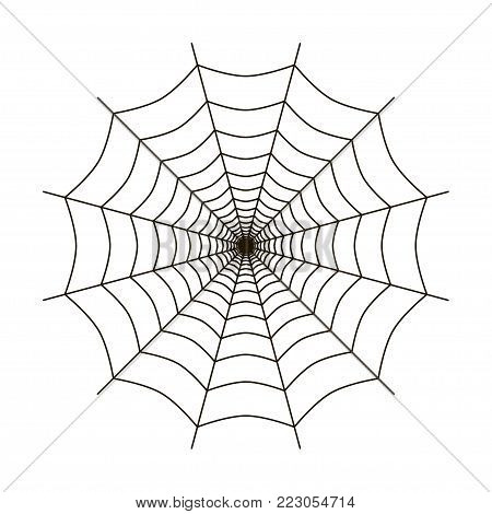 Spider web vector illustration. Spider web isolated flat vector icon
