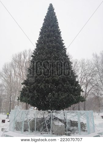 Perm, Russia, January 2017. The project is traveling in Russia. Great Christmas tree in the park