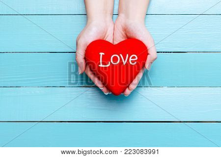 red heart in hands on a blue background