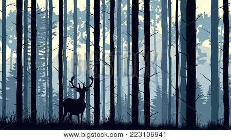 Horizontal vector illustration with deer and many pine trunks in the morning mist.