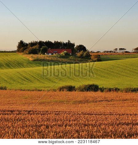 Idyllic rural landscape in Jylland, Denmark. Beautiful shaped hills and meadows in Jylland, Denmark. Rural summer scene.