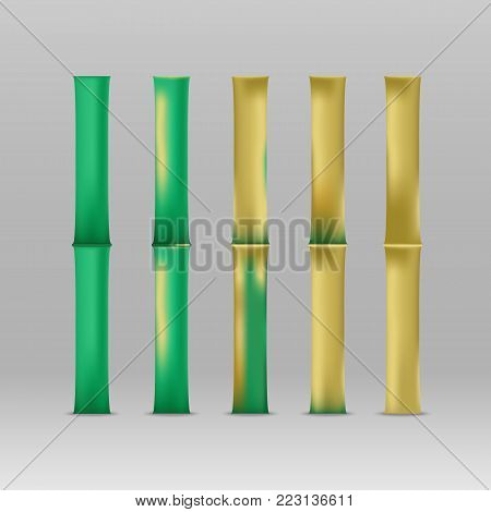 Evolution of bamboo. Mockup of Bamboo stems realistic 3d green and  brown sticks.