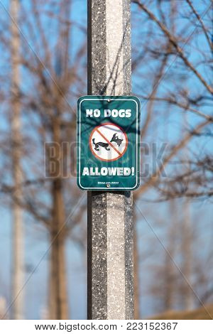 Green No Dogs Allowed Sign In The Park