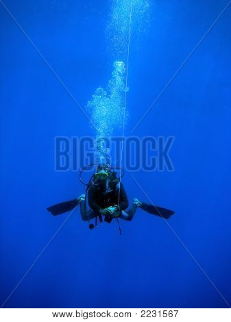 Diver Swimming With Buoy