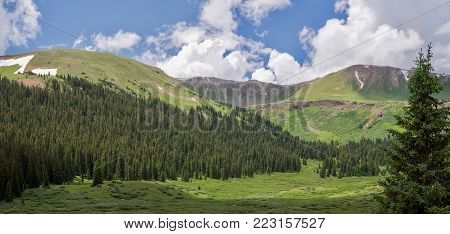 Summer Mountain Valley View Near Aspen Colorado