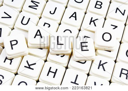 Paleo text word crossword title caption label cover background. Alphabet letter toy blocks. White alphabetical letters. Paleo.