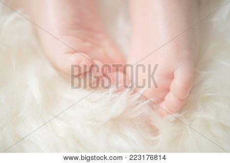 are feet of a cute newborn baby in warm white blanket. Childhood. Small bare feet of a little baby girl or boy. Sleeping newborn child.