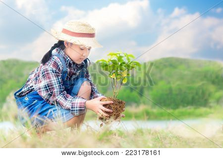 Asian child girl plant sapling tree in the nature spring for reduce global warming growth feature, reduce global warming and take care nature earth,  blue sky background.