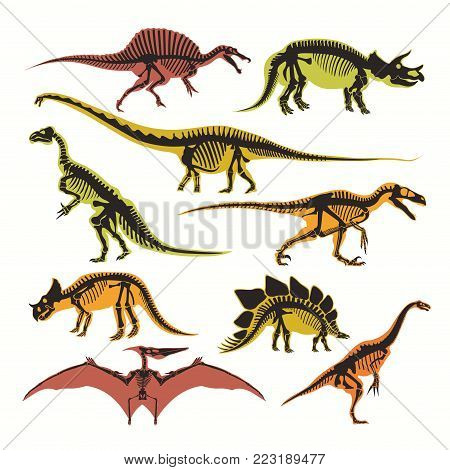 Dinosaurs skeletons and silhouettes vector flat isolated icons. Jurassic fossil reptiles of T Rex tyrannosaurus, pterodactyl and brontosaurus for dinosaur archeology museum design