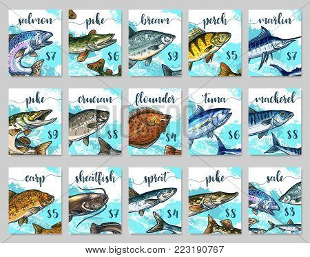 Fish market price cards templates. Vector sketch of sea or ocean fishes salmon, pike or bream and perch or marlin, fisherman catch of flounder, tuna or mackerel and carp with sheatfish for fish shop
