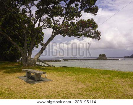 Matheson Bay in Coromandel, North Island, New Zealand