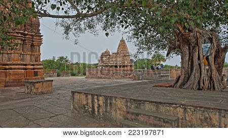BIJOLIA, RAJASTHAN, INDIA - DECEMBER 11, 2017: Hindu temples with a  Banyan tree in the foreground. Bijolia is located 50 km from Bundi