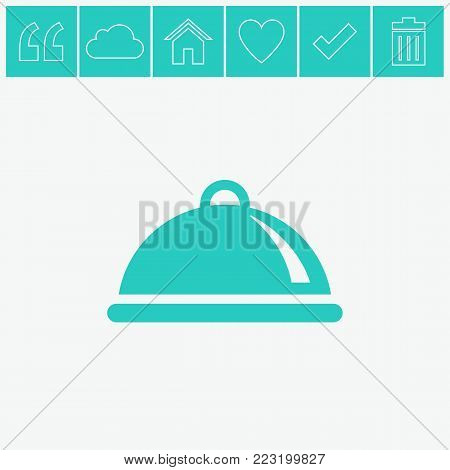 Food platter serving vector flat icon on gray background.