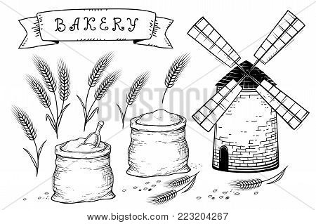 bakery set with wheat ears, grains, mill and sacks with flour