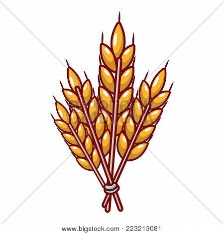 Winter wheat icon. Cartoon illustration of winter wheat vector icon for web.