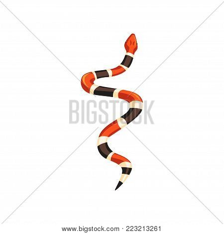 Cartoon milk snake. Non-venomous creature with smooth and shiny scales. Red-white-brown reptile with alternating bands. Wildlife concept. Colorful flat vector illustration isolated on white background