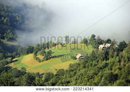 The fog enveloped the village in the mountainsю Impressive Carpathian landscapes - a village surrounded by mighty forests, Ukraine. Summer morning, the fog enveloped the mountain over the village. View of houses and cultivated fields on a hill surrounded