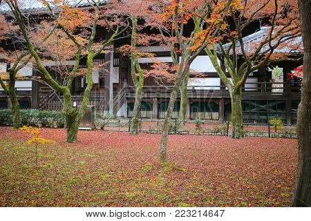 The Shinsho Gokuraku Ji Garden At Fall