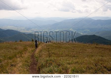 A trail in Bieszczady Mountains, Poland