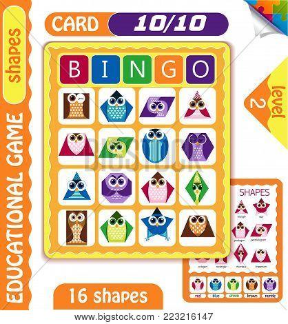 Owls  Bingo  Shapes 3