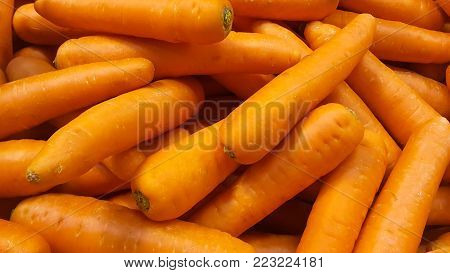 Fresh carrot in the grocery store (carrot, carrots)
