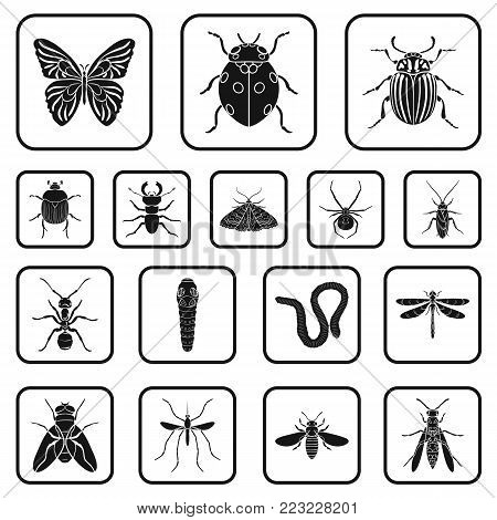 Different kinds of insects black icons in set collection for design. Insect arthropod vector symbol stock  illustration.