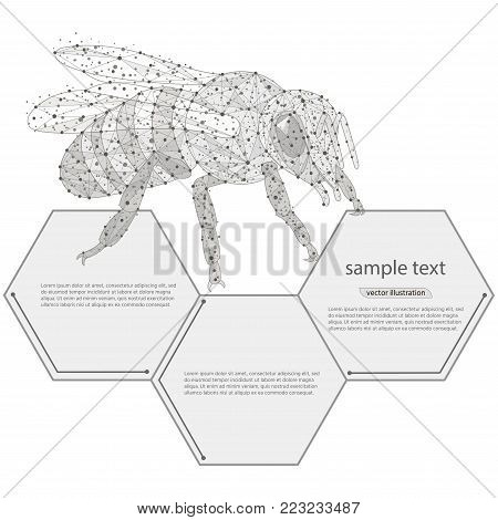 Bee abstract logo vector photo free trial bigstock bee abstract logo design low poly frame isolated black on white backgrounde concept ccuart Images