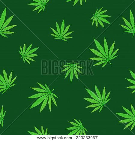 Falling green hemp seamless texture background. Cannabis fall leaf nature pattern. Grass hashish marijuana drug design backdrop