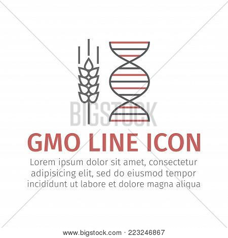 GMO wheat line icon. Vector sign for web graphic.