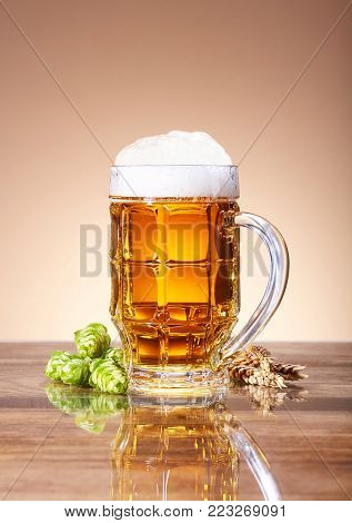A glass beer mug, pint of fresh beer, natural components of beer, ears of wheat, ripe fruit hops, ingredients for the preparation of beer