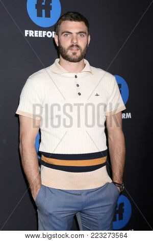 LOS ANGELES - JAN 18:  Alex Roe at the Freeform Summit 2018 at NeueHouse on January 18, 2018 in Los Angeles, CA