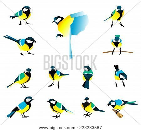 Flat icons of titmouse set. Winter birds in a flat style. Great Tit, Parus major.
