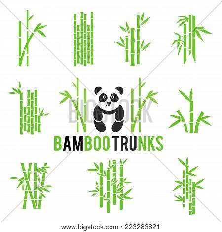 Bamboo vector icons set isolated on white background. Rainforest in Asia. Stick bamboo with foliage.