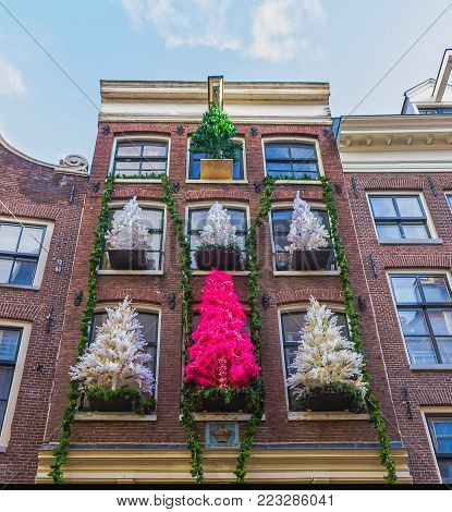 Amsterdam, Netherlands - December 14, 2017: The Christmas trees at old house at Amsterdam, Netherlands on December 14, 2017