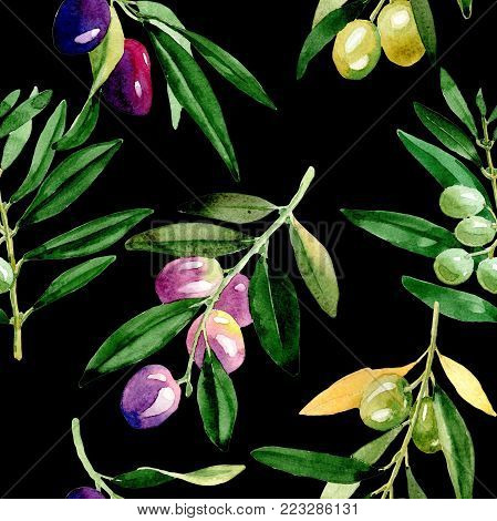 Olive tree pattern in a watercolor style. Full name of the plant: Branches of an olive tree. Aquarelle olive tree for background, texture, wrapper pattern, frame or border.