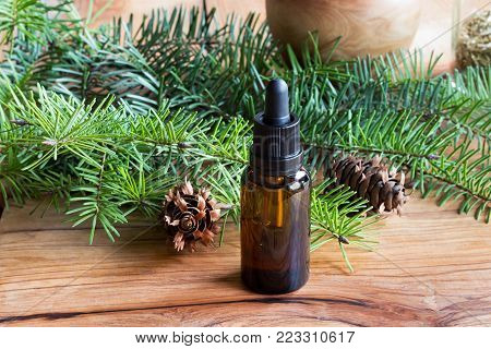 A bottle of Douglas fir essential oil with young Douglas fir branches on a wooden table
